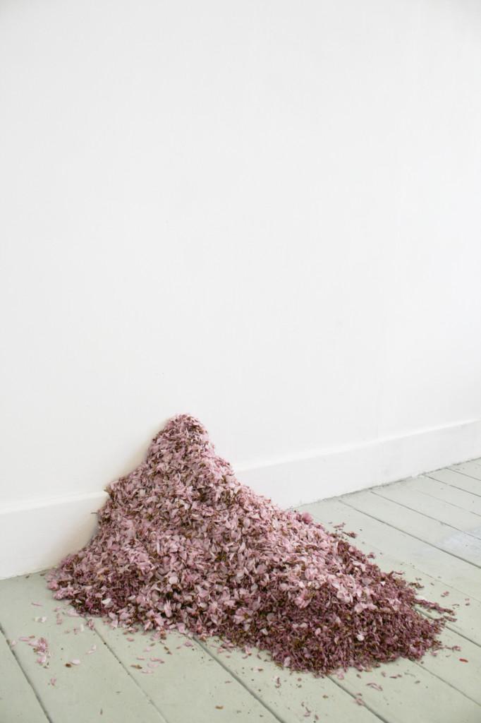 Eve Ritchie_IMAGE 2_Sakura heap